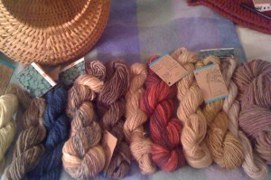 RB-44C foraged plants yarn collection