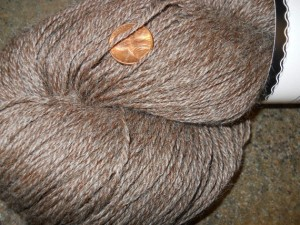 WP - HSY - natural brown with coin