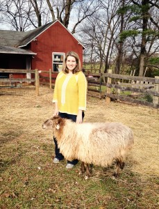 ED- 222 Elysa-and-Cookie-the-Karakul-Sheep-at-RedGate-Farm