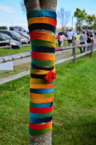 yarn bombed tree w